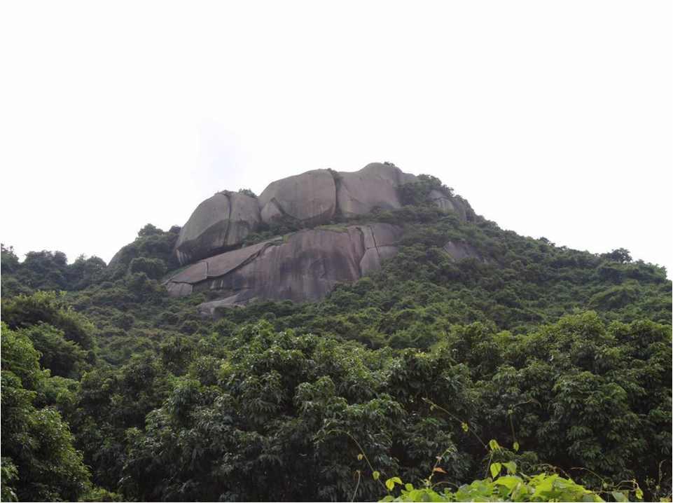 项目简述 为了提高深圳市宝安区石岩片区的整体综合旅游地位,加强